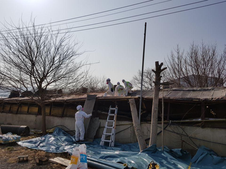 9 번째 사진  에  연면적787 ㎡ 경북 영천시 대창면 명성농장 슬레이트지붕 석면철거
