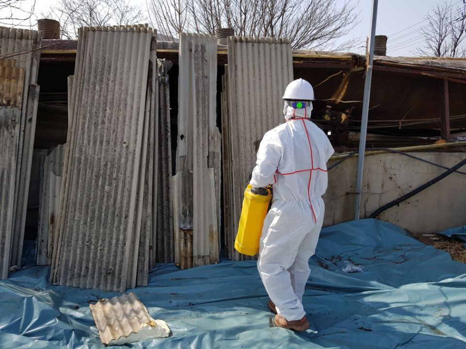 12 번째 사진  에  연면적787 ㎡ 경북 영천시 대창면 명성농장 슬레이트지붕 석면철거