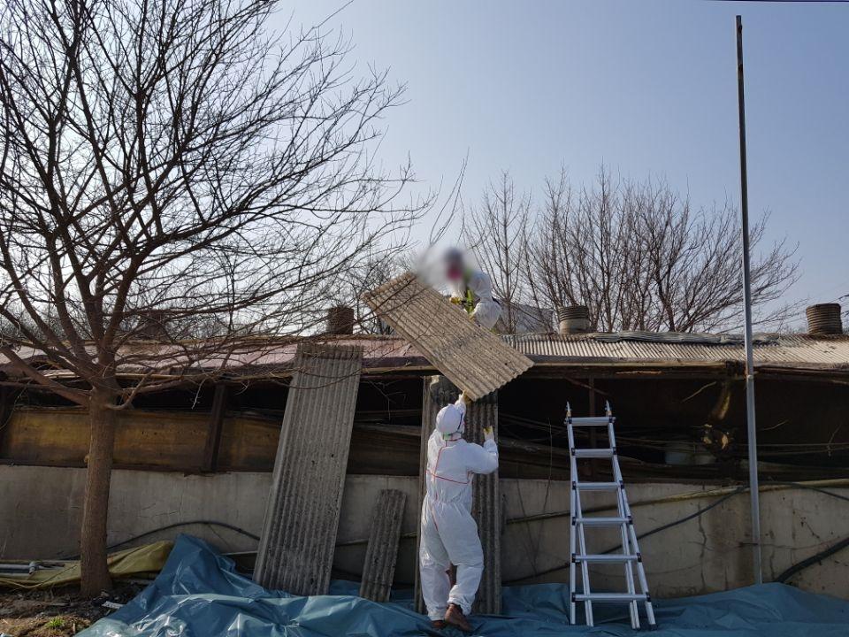 11 번째 사진  에  연면적787 ㎡ 경북 영천시 대창면 명성농장 슬레이트지붕 석면철거