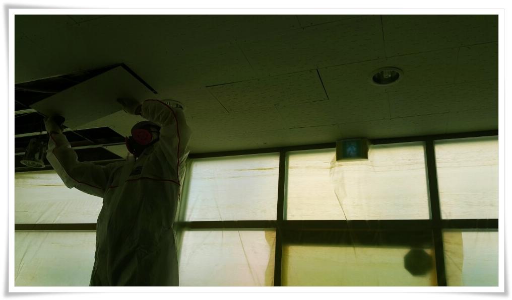 7 번째 사진  에  연면적 ㎡ 울진 현대자동차 대리점 천장 석면 텍스 철거 현장